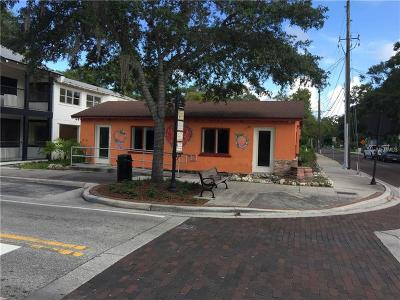 Safety Harbor Commercial For Sale: 507 Main Street N