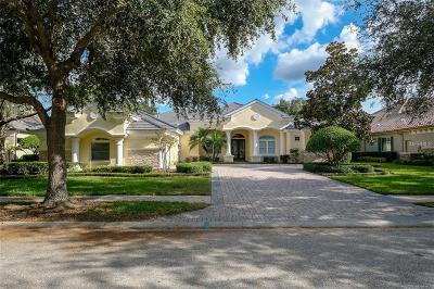 Palm Harbor Single Family Home For Sale: 913 Skye Lane