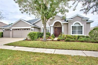 Tampa Single Family Home For Sale: 6613 Thornton Palms Drive