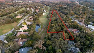 Tarpon Springs Residential Lots & Land For Auction: E Lake Road