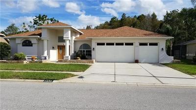 New Port Richey Single Family Home For Sale: 1430 Davenport Drive