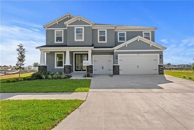 Safety Harbor, Safety Harobr Single Family Home For Sale: 3422 Channelside Court