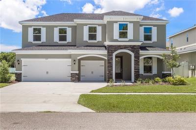 Safety Harbor Single Family Home For Sale: 3418 Channelside Court