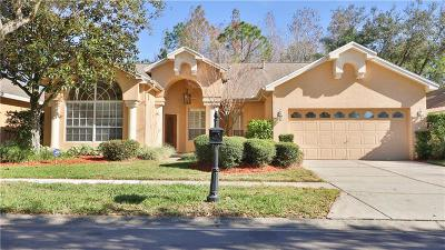 Hernando County, Hillsborough County Single Family Home For Sale: 9809 Woodbay Drive