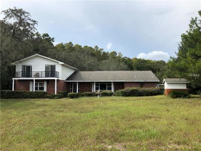 New Port Richey Single Family Home For Sale: 10241 Little Road