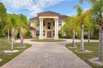 Tarpon Springs Single Family Home For Sale: 2555 Bryan Lane