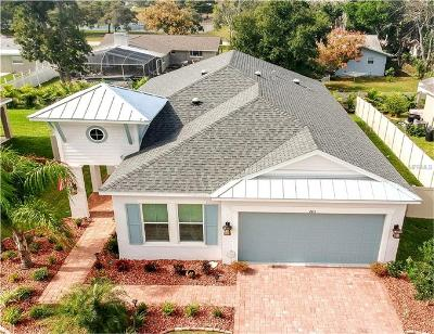 Tarpon Springs Single Family Home For Sale: 763 W Bayshore Drive