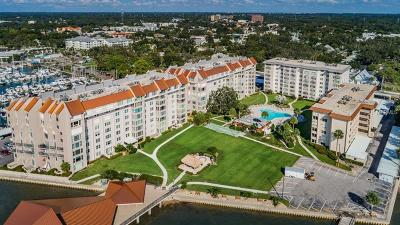 Hernando County, Hillsborough County, Pasco County, Pinellas County Condo For Sale: 622 Edgewater Drive #823