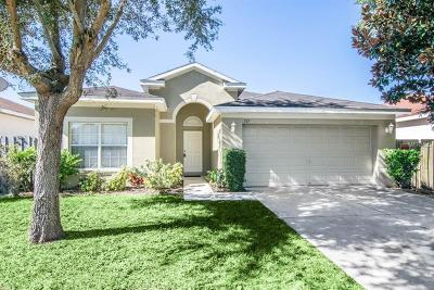 Hillsborough County Single Family Home For Sale: 717 Star Pointe Drive