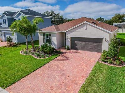 Tarpon Springs Single Family Home For Sale: 867 W Bayshore Drive