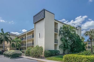 Hillsborough County, Pasco County, Pinellas County Condo For Sale: 14130 Rosemary Lane #3304