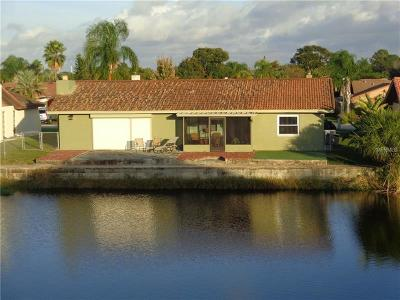 Port Richey Single Family Home For Sale: 9731 San Lorenzo Way