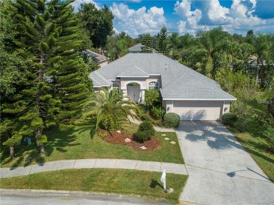 Tarpon Springs Single Family Home For Sale: 1677 Water Oak Drive