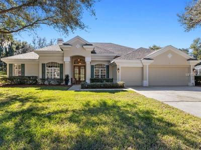 New Port Richey Single Family Home For Sale: 6152 Claire De Lune Court