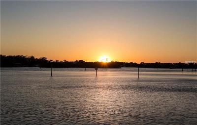 Tarpon Springs Residential Lots & Land For Sale: 0 Meyers Cove Drive #LOT 8