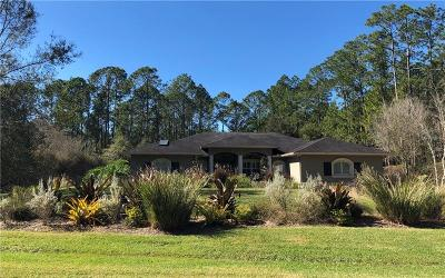 Pasco County Single Family Home For Sale: 7617 Thunderhead Street