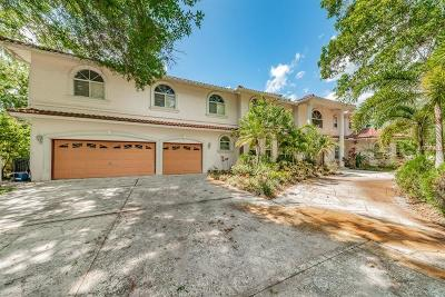 Safety Harbor Single Family Home For Sale: 5029 Muellers Lane