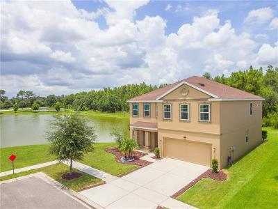 Pasco County Single Family Home For Sale: 32795 Grantman Drive