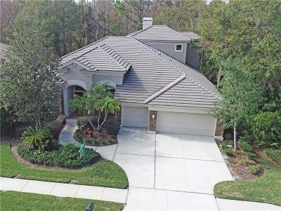 Tarpon Springs Single Family Home For Sale: 1556 Owls Retreat