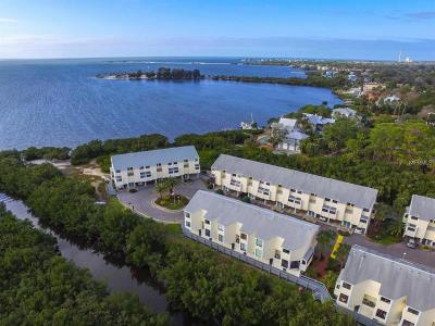 Tarpon Springs Condo For Sale: 1500 Sunset Road #C9