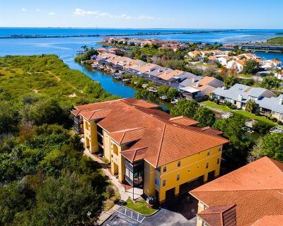 Tampa Condo For Sale: 4314 Bayside Village Drive #203