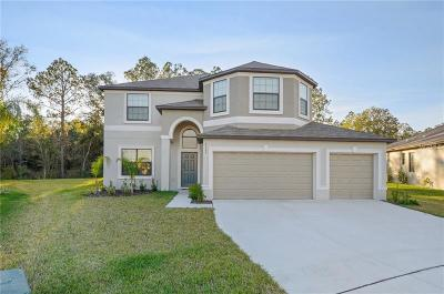 Zephyrhills Single Family Home For Sale: 6563 Paden Wheel Street