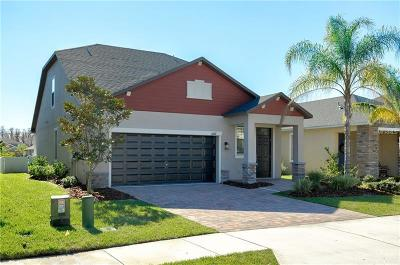 New Port Richey Single Family Home For Sale: 11677 Lake Boulevard