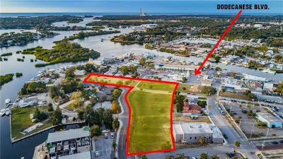 Tarpon Springs Residential Lots & Land For Sale: 0 Roosevelt Boulevard