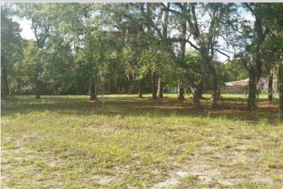 Spring Hill Residential Lots & Land For Sale: 14145 Amero Lane