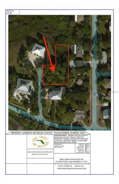Palm Harbor Residential Lots & Land For Sale: 0 Michigan Avenue