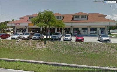 Palm Harbor Commercial For Sale: 1461 Palm Harbor Boulevard N #1461