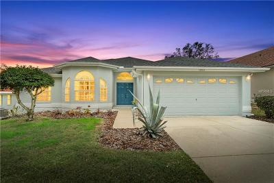 Tarpon Springs Single Family Home For Sale: 1080 Clippers Way