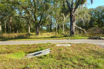 Land O Lakes Residential Lots & Land For Sale: 6712 Land O Lakes Boulevard