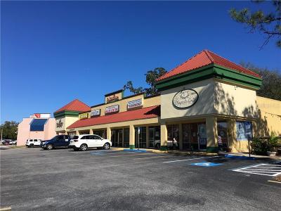 Palm Harbor Commercial For Sale: 602 Alt 19