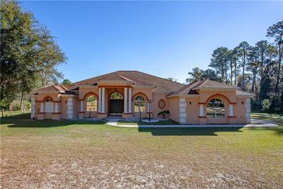 Brooksville Single Family Home For Sale: 7322 Wpa Road