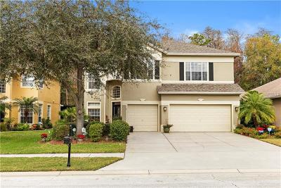 Palm Harbor Single Family Home For Sale: 4174 Grandchamp Circle