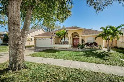 Tarpon Springs Single Family Home For Sale: 1128 Clippers Way