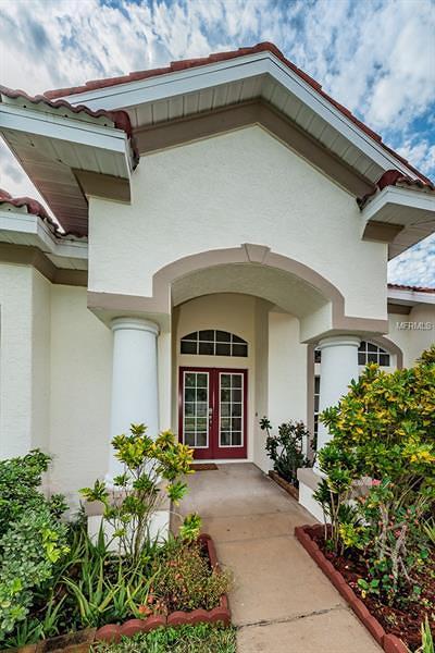 Tarpon Springs Single Family Home For Sale: 621 Salt Lake Drive