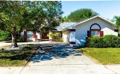 Hernando County, Hillsborough County, Pasco County, Pinellas County Single Family Home For Sale: 1705 Percheron Drive
