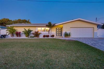 Hillsborough County, Pasco County, Pinellas County Single Family Home For Sale: 4111 Miller Drive