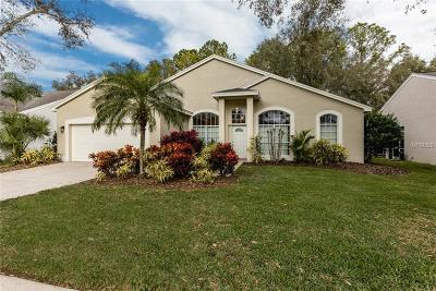 Palm Harbor Single Family Home For Sale: 4287 Tremblay Way