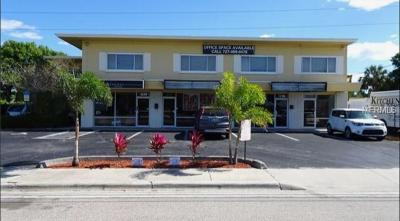 St Petersburg, Clearwater Commercial For Sale: 3217 Tyrone Boulevard N