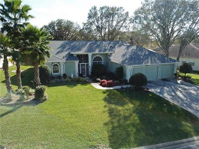 Beverly Hills, Citrus Hills, Citrus Springs, Crystal River, Dunnellon, Floral City, Hernando, Homassa, Homosassa, Inverness, Lecanto, Port Charlotte Single Family Home For Sale: 5602 W Hunters Ridge Circle