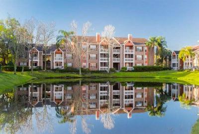 St Petersburg FL Rental For Rent: $1,500