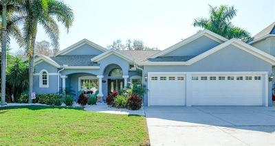 Gulfport FL Single Family Home For Sale: $825,000