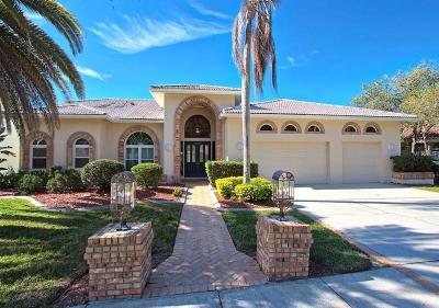 Palm Harbor Single Family Home For Sale: 4028 Wellington Parkway