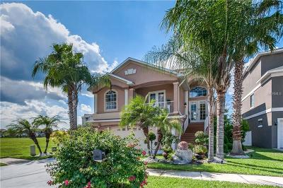 New Port Richey, New Port Richie Single Family Home For Sale: 5713 Egrets Place