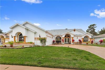 Hudson Single Family Home For Sale: 13521 Glaze Brook Drive