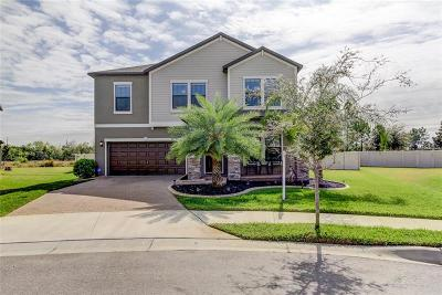 Ruskin Single Family Home For Sale: 10231 Count Fleet Drive