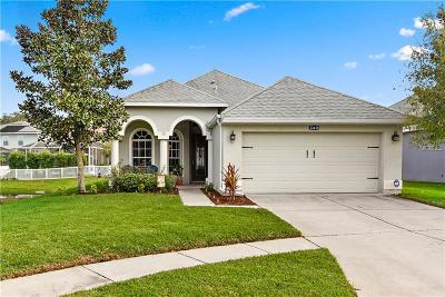 Spring Hill Single Family Home For Sale: 12458 Duckett Court